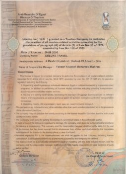 Deluxe Travel License
